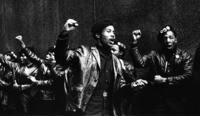 Quem foram os Panteras Negras?